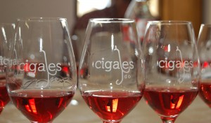 Rosados-Cigales-clarete