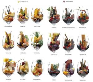sabores-aromas-vino