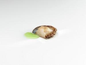 Abalón con gónadas en salsa verde foto jose luis lopez de Zubieria