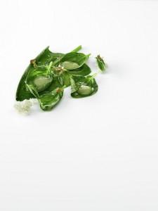 Espinacas guisadas, leche de almendra y aceite de oliva foto Jose Luis Lopez de Zubiria