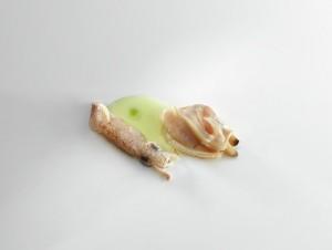 Puntilla con almeja rubia y jugo de alcachofas foto jose luis lopez de zubiria