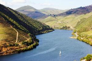 vino_portugues_y_bienestar_en_el_valle_del_duero_6053_745x497