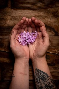 Flor de ajo ©Mikel Ponce