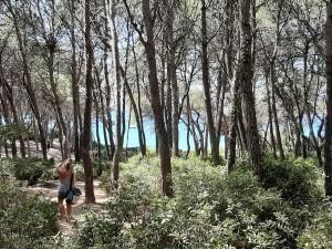 Bosque de la Marquesa de Tarragona_Grupo Blaumar