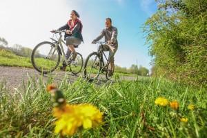 Randonnée. Parc Naturel des Plaines de l'Escaut. Belgique