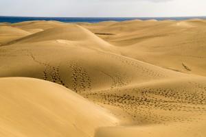 desert-607950_1920