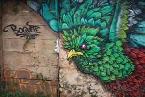 quetzal-1680758_1920