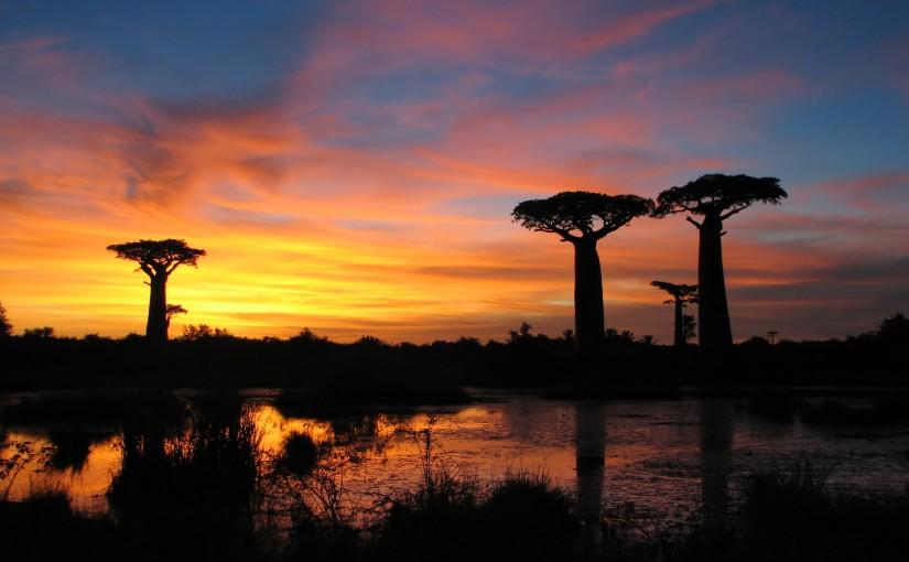 Madagascar, ¿por qué no?